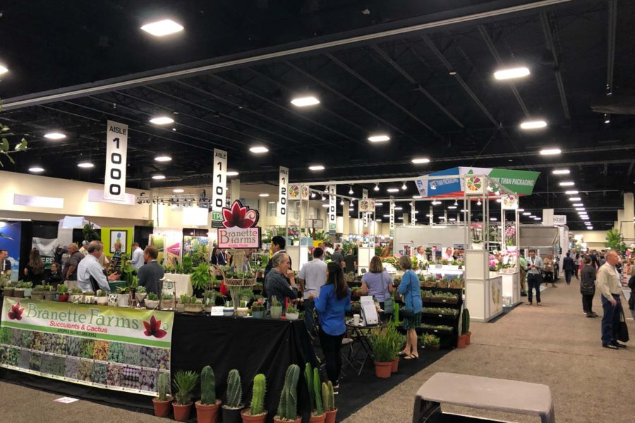 Tropicars Attends TPIE Trade Show 2019